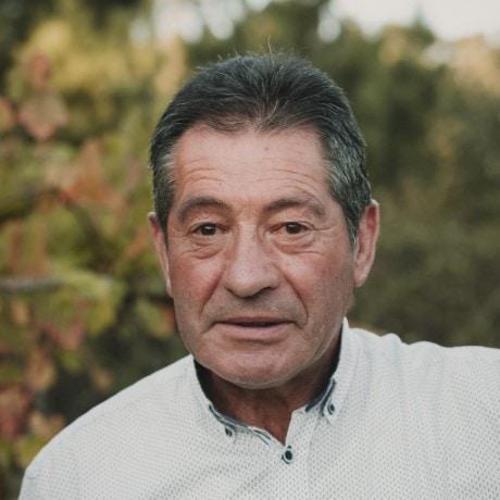 Manuel Fontán