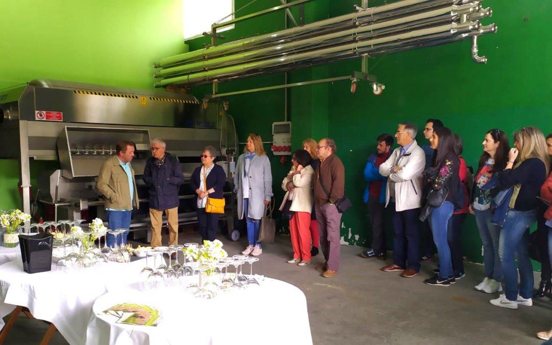 VIII Jornadas de puertas abiertas de las Rutas del Vino de Galicia