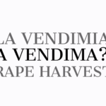 A vendima - La vendimia - Grape harvest